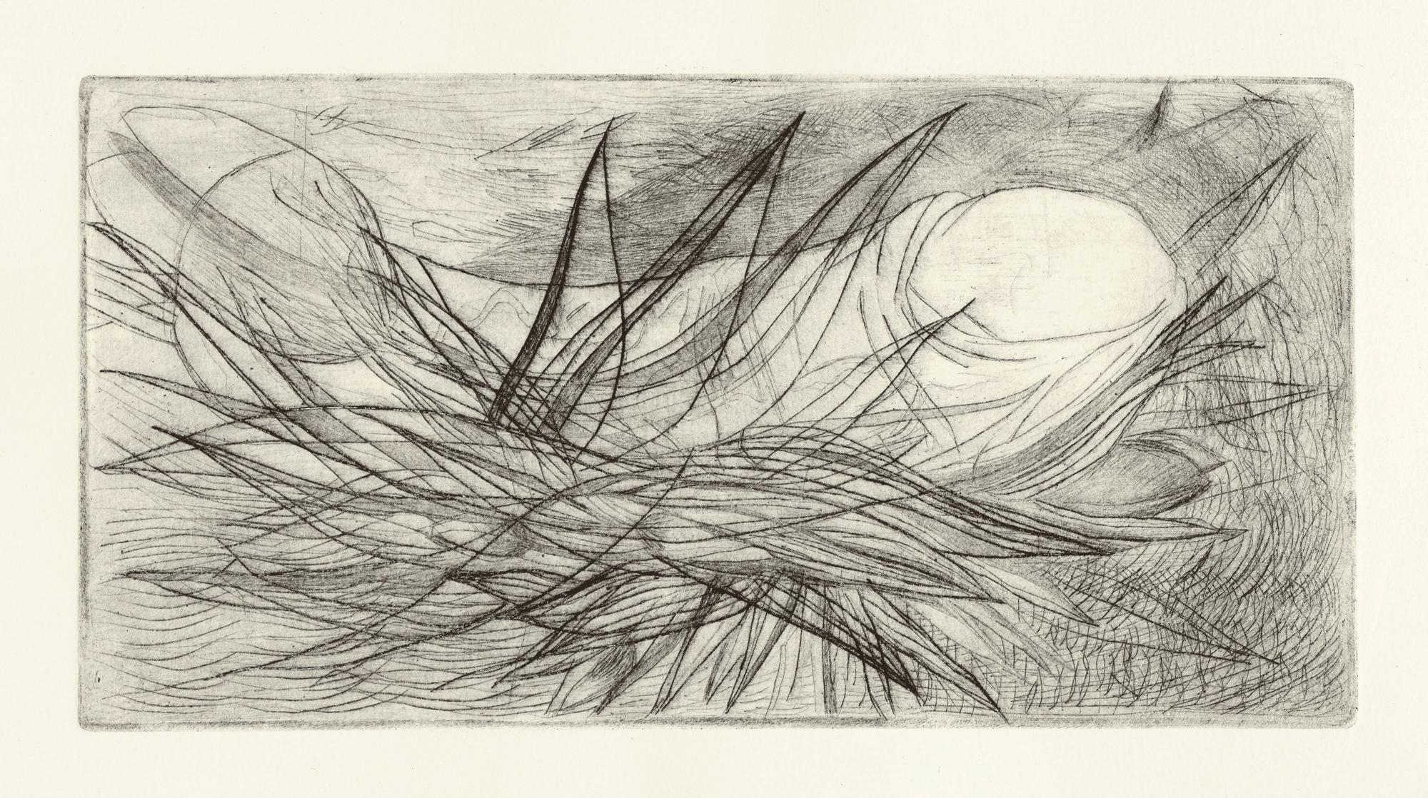 Yvonne Andreini, Stillleben, 2021 25 x 40 cm, Kaltnadelradierung
