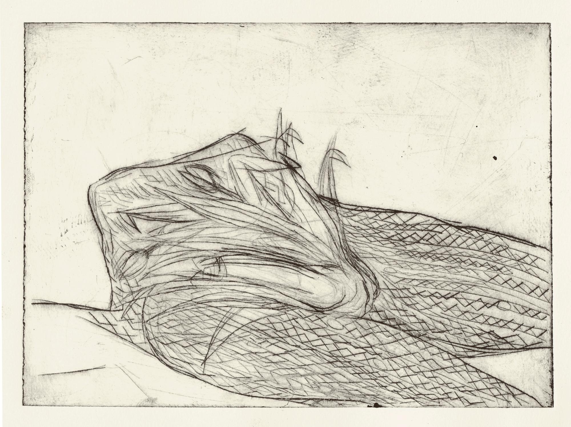 Yvonne Andreini, Ohne Titel, 2021, 25 x 30 cm, Kaltnadelradierung